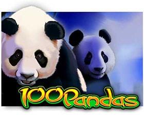 IGT 100 Pandas