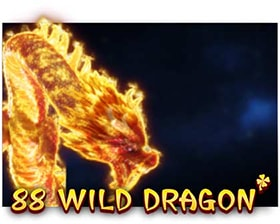 Booongo 88 Wild Dragon