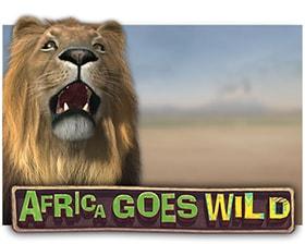 Leander Africa Goes Wild