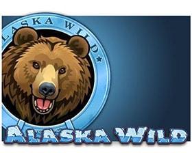 Casino Technology Alaska Wild