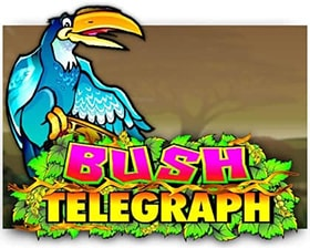 Microgaming Bush Telegraph