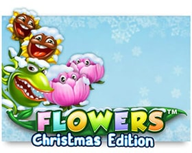 NetEnt Flowers Christmas Edition