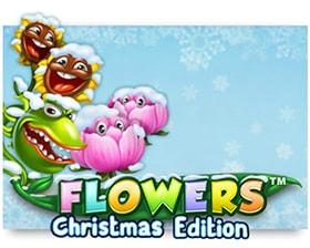 NetEnt Flowers Christmas Edition