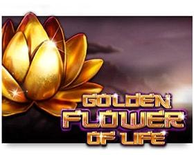 Casino Technology Golden Flower of Life