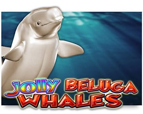Casino Technology Jolly Beluga Whales
