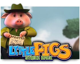 Leander Little Pigs