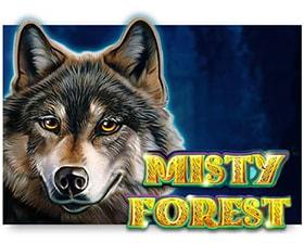 Casino Technology Misty Forest