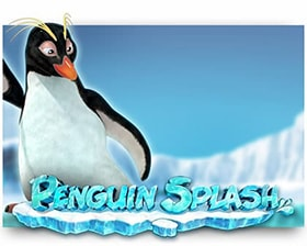Rabcat Penguin Splash