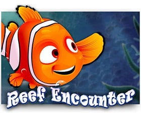 Saucify Reef Encounter