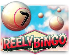 Leander Reely Bingo