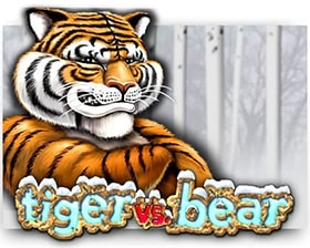 Microgaming Tiger vs Bear