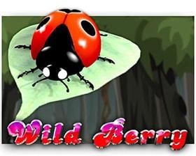 Saucify Wild Berry