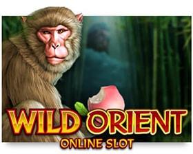 Microgaming Wild Orient