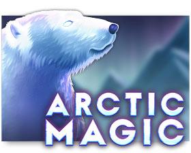 Microgaming Arctic Magic