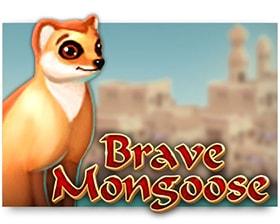 Fugaso Brave Mongoose