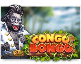 Asylum Labs Congo Bongo