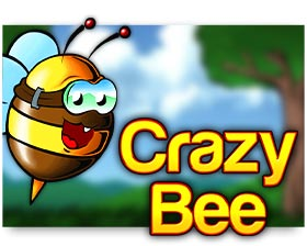 Amatic Crazy Bee