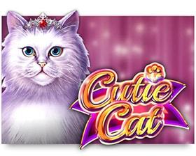 Gamomat Cutie Cat
