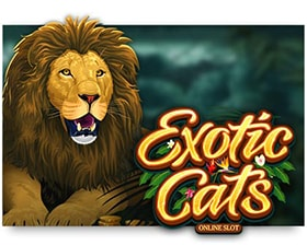Microgaming Exotic Cats Desktop