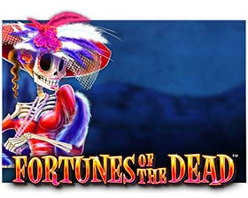 Side City Studios Fortunes of the Dead