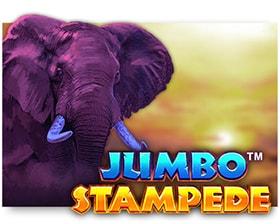 iSoftBet Jumbo Stampede