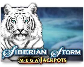 IGT MegaJackpots Siberian Storm