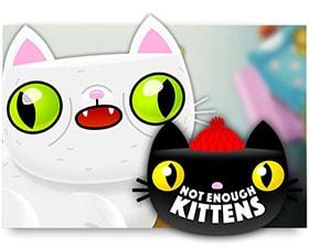 Thunderkick Not Enough Kittens