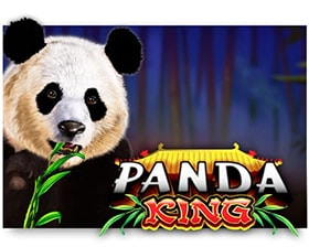 Ainsworth Panda King