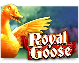 Cayetano Royal Goose