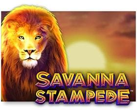 Merkur Savanna Stampede