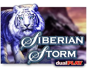 IGT Siberian Storm Dual Play
