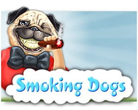 Fugaso Smoking Dogs
