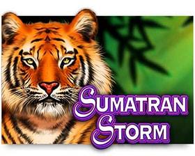IGT Sumatran Storm
