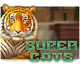 Amatic Super Cats
