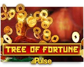 iSoftBet Tree of Fortune