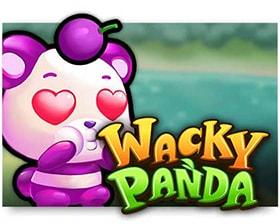 Microgaming Wacky Panda