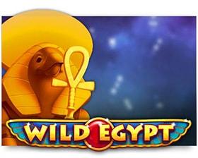 Cayetano Wild Egypt