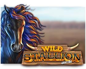 Stakelogic Wild Stallion Quattro