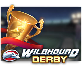 Play'n GO Wildhound Derby