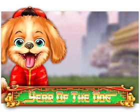 DTech Year of The Dog